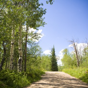 things to do in winter park co in the summer