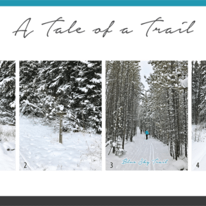 tale-of-a-trail-01-copy